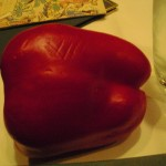 A red pepper, stolen from a veggie display at a bar